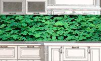 Фартук кухни с фотопечатью - Oxalis acetosella купить в магазине Интерьерные наклейки